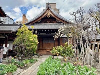 光縁寺の本殿