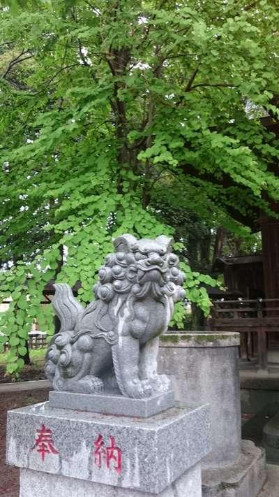 賀茂別雷神社の近くの神社お寺|加茂別雷神社