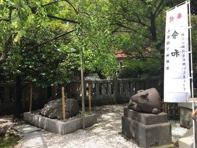 東京都牛天神北野神社の写真
