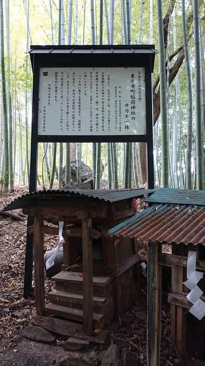 東光寺町稲荷神社の歴史
