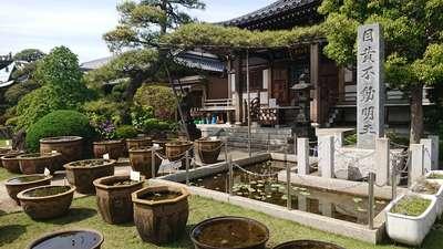 最勝寺の庭園