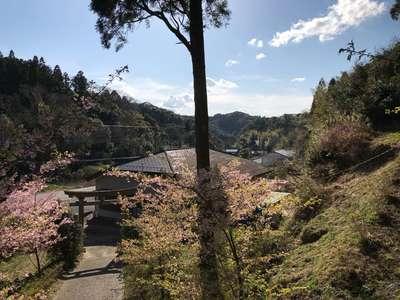 千葉県山神社の自然