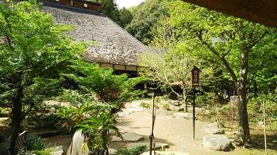 大雄寺(栃木県)