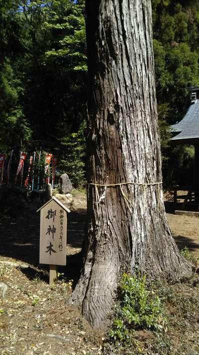 瀧神社(茨城県)