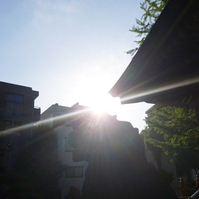 香取神社(東京都新小岩駅) - 自然の写真
