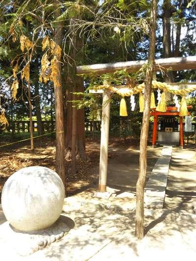 山梨県浅間神社の鳥居