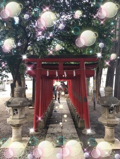 東京都花園神社の鳥居