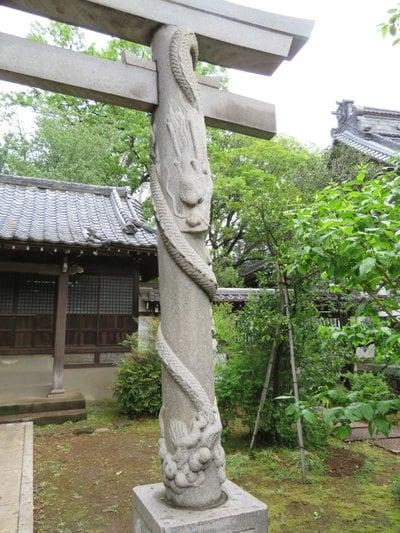 東京都高円寺の鳥居