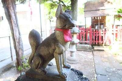 豊川稲荷神社の狛犬