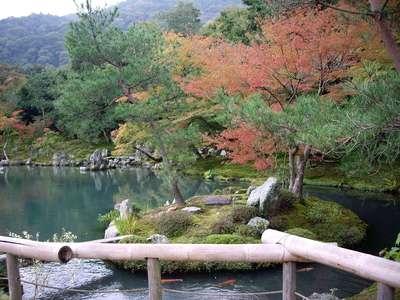 天龍寺(京都府嵐山(京福)駅) - 庭園の写真