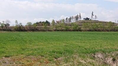 御園神社の景色