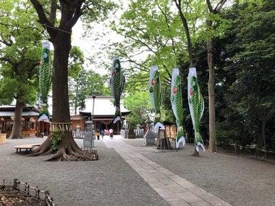 星川杉山神社(神奈川県)