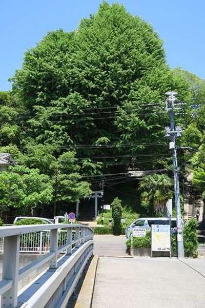 東京都水神社の写真
