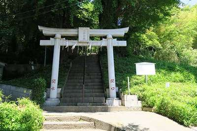 東京都水神社の鳥居