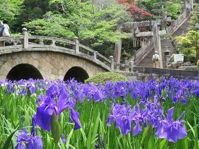 菅原神社の自然