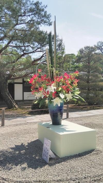 仁和寺(京都府御室仁和寺駅) - 芸術の写真