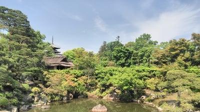 仁和寺(京都府御室仁和寺駅) - 庭園の写真