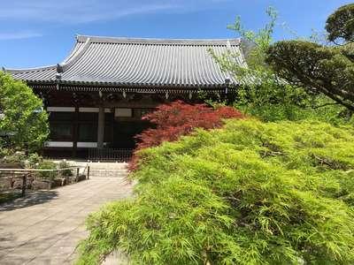 東京都観泉寺の本殿