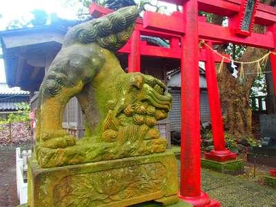 重蔵神社(石川県穴水駅) - 狛犬の写真
