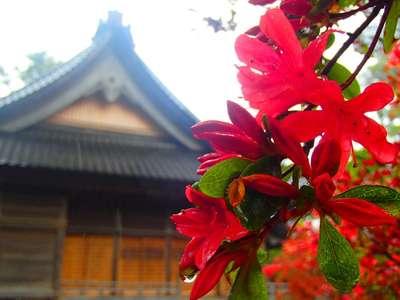 重蔵神社(石川県穴水駅) - 自然の写真