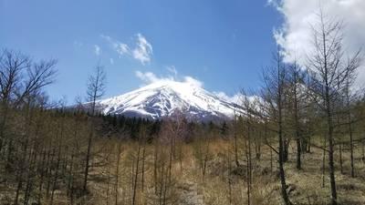 山神社の景色