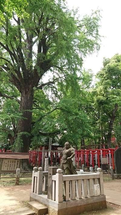 鬼子母神堂(東京都)