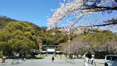 竜雲寺の近くの神社お寺|静岡県護国神社
