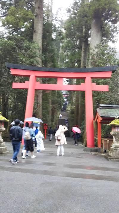 神奈川県箱根神社の鳥居