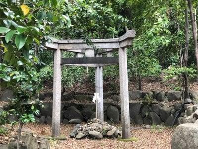 京都府木嶋坐天照御魂神社の写真