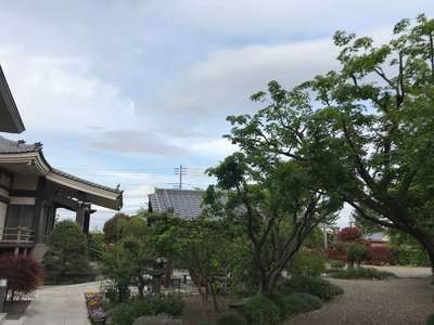 常福寺の自然