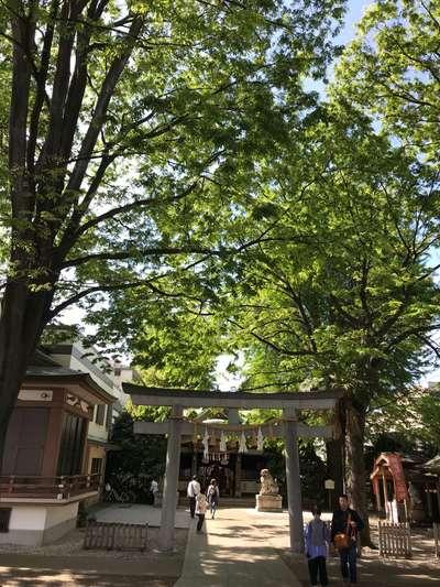 大鳥神社の自然