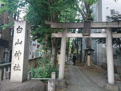 東京都白山神社の鳥居