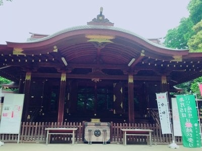 渋谷氷川神社(東京都恵比寿駅) - 本殿・本堂の写真