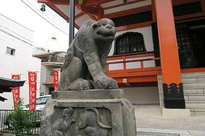 善國寺(東京都牛込神楽坂駅) - 狛犬の写真