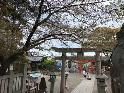 玉前神社の建物その他