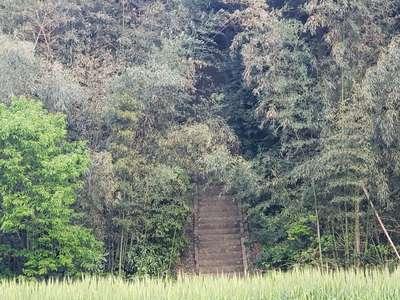 福岡県熊野神社の写真