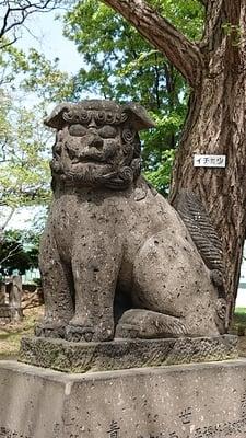 江南神社(北海道太平駅) - 狛犬の写真