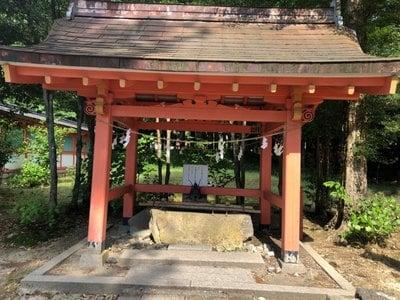 出石神社(兵庫県国府駅) - 手水舎の写真