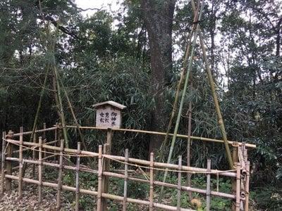 長幡部神社(茨城県)