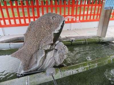 十日恵比須神社(福岡県吉塚駅) - 手水舎の写真