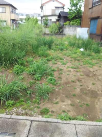 三圍稲荷社(三囲神社)の周辺