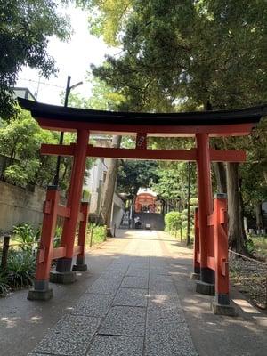 熊野神社(東京都自由が丘駅) - 鳥居の写真