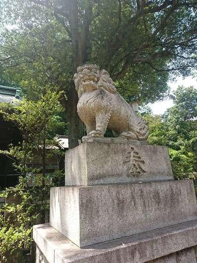 東京都熊野神社の写真