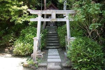 報国寺の近くの神社お寺 杉本寺