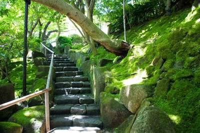 報国寺(神奈川県鎌倉駅) - 未分類の写真