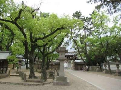 西宮神社(兵庫県西宮(阪神)駅) - その他建物の写真
