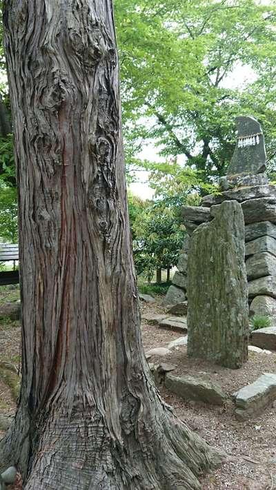 下野上神社(埼玉県)