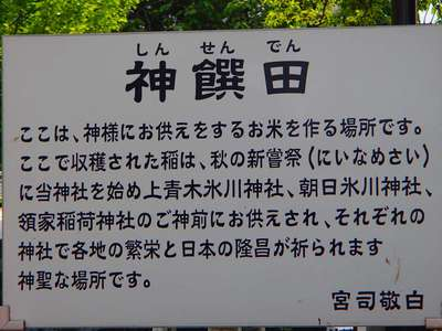 鎮守氷川神社の歴史