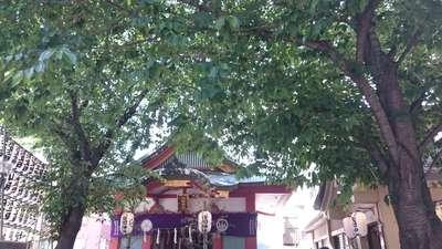 浅草富士浅間神社(東京都)