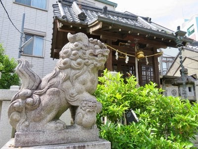 水神社の狛犬